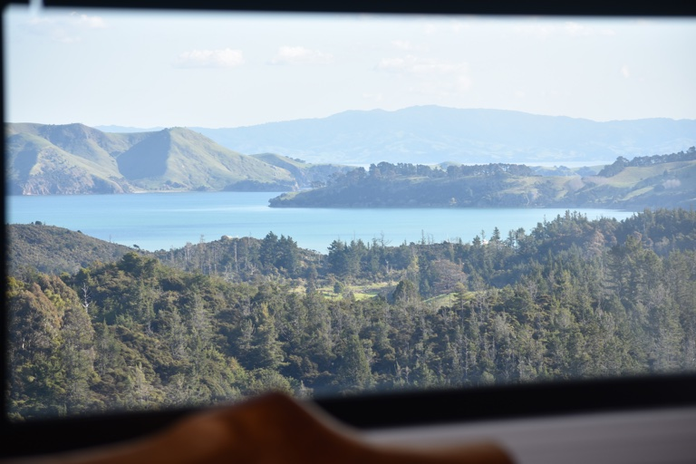 View from Kauri window